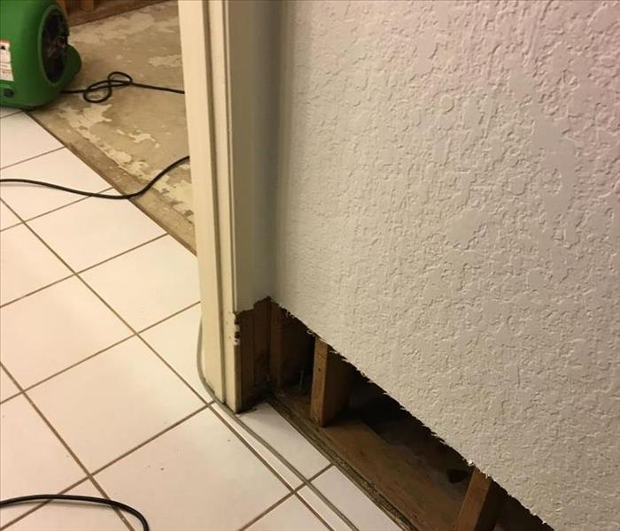 Slow Leak Causes Mold