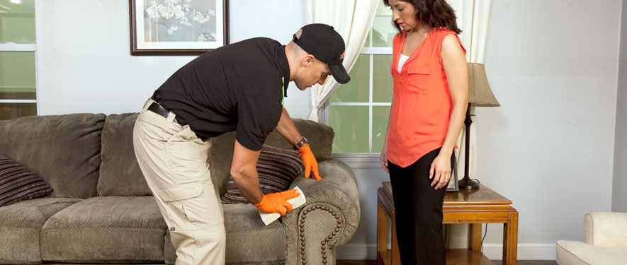 Escondido, CA carpet upholstery cleaning